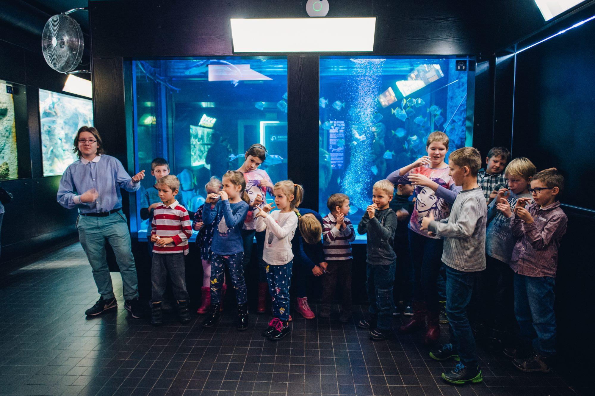 Young Sea's Explorer Club