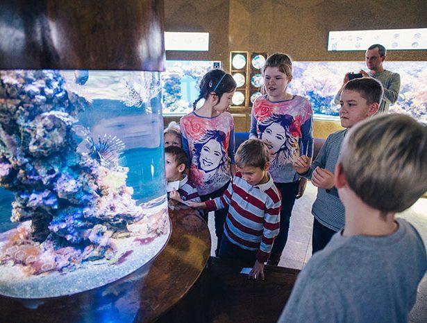 Dzień Dziecka w Akwarium