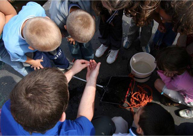 Wraca oferta edukacyjna Akwarium