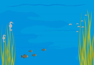 Dni Edukacji Morskiej | 10-11.10